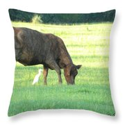 Cow And Friend Abstract Throw Pillow