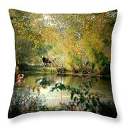 Cow By The Pond Throw Pillow