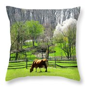Cow Grazing In Pasture In Spring Throw Pillow