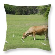 Cow Grazing With Egret Throw Pillow