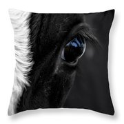 Cow Hey You Looking At Me Throw Pillow