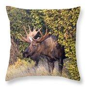Cow Hunter Throw Pillow