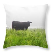 Cow In Fog Throw Pillow