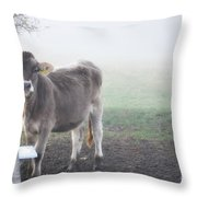 Cow In The Fog Throw Pillow
