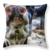 Cow Kiss Me Photo Art Throw Pillow