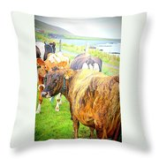 Cows Are Also Having Their Meetings  Throw Pillow