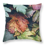 Cow Parsnip Leaves In The Fall Throw Pillow
