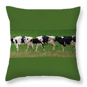 Cow Path Throw Pillow