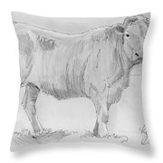 Cow Pencil Drawing Throw Pillow