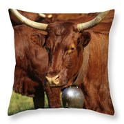 Cow Salers Throw Pillow
