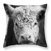 Cow Square Throw Pillow