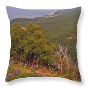 Cow Vetch In Cape Breton Highlands Np-ns Throw Pillow