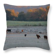 Cows At Sunrise Throw Pillow