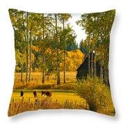 Cows Grazing 3 Throw Pillow