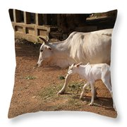 Cows In Hampi Throw Pillow