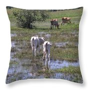 Cows In The Pantanal Throw Pillow