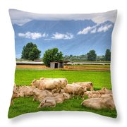 Cows On The Green Field Throw Pillow