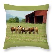 Cows8918 Throw Pillow