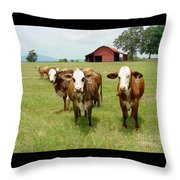 Cows8931 Throw Pillow