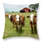 Cows8931 Throw Pillow