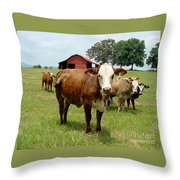 Cows8945 Throw Pillow