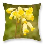 Cowslip   Primula Veris Throw Pillow