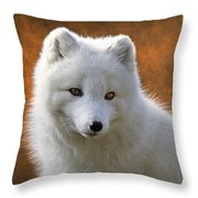Coy Arctic Fox Throw Pillow