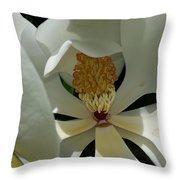 Coy Magnolia Throw Pillow
