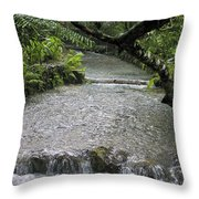 Coyaba River Gardens 6 Throw Pillow
