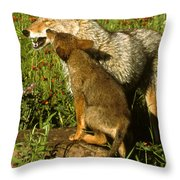 Coyote And Pup Throw Pillow