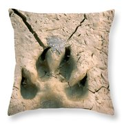 Coyote Print Throw Pillow