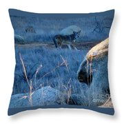 Coyote Wild Throw Pillow