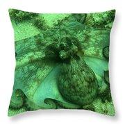 Cozumel Octopus Throw Pillow