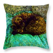 Cozy Calico Cat Throw Pillow