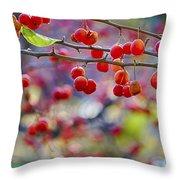 Crab Apples 2 Throw Pillow
