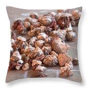 Crab Race Throw Pillow