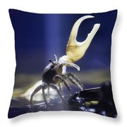 Crab Star Throw Pillow