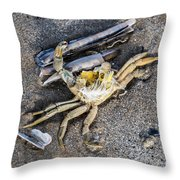 Crab With A Feather Throw Pillow