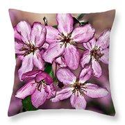 Crabapple Blossom Throw Pillow