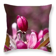 Crabapple Bud Throw Pillow