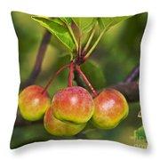 Crabapple Bunch Throw Pillow