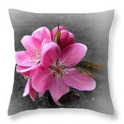 Crabapple Flower Throw Pillow