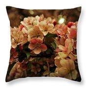 Crabapple In Bloom Throw Pillow