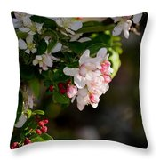 Crabapple Intricacies Throw Pillow