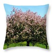 Crabapple Orchard Throw Pillow