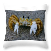 Crabby - Atlantic Ghost Crab Throw Pillow
