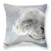 Crabeater Seal Throw Pillow