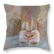 Cracked Down Throw Pillow