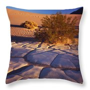 Cracked Mud - Sand Ripples 3 Throw Pillow