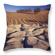 Cracked Mud - Sand Ripples Throw Pillow